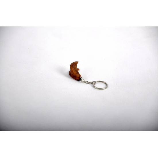 Diving clip Keychain
